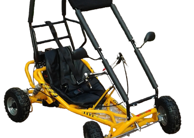 Yellow-Rollcage